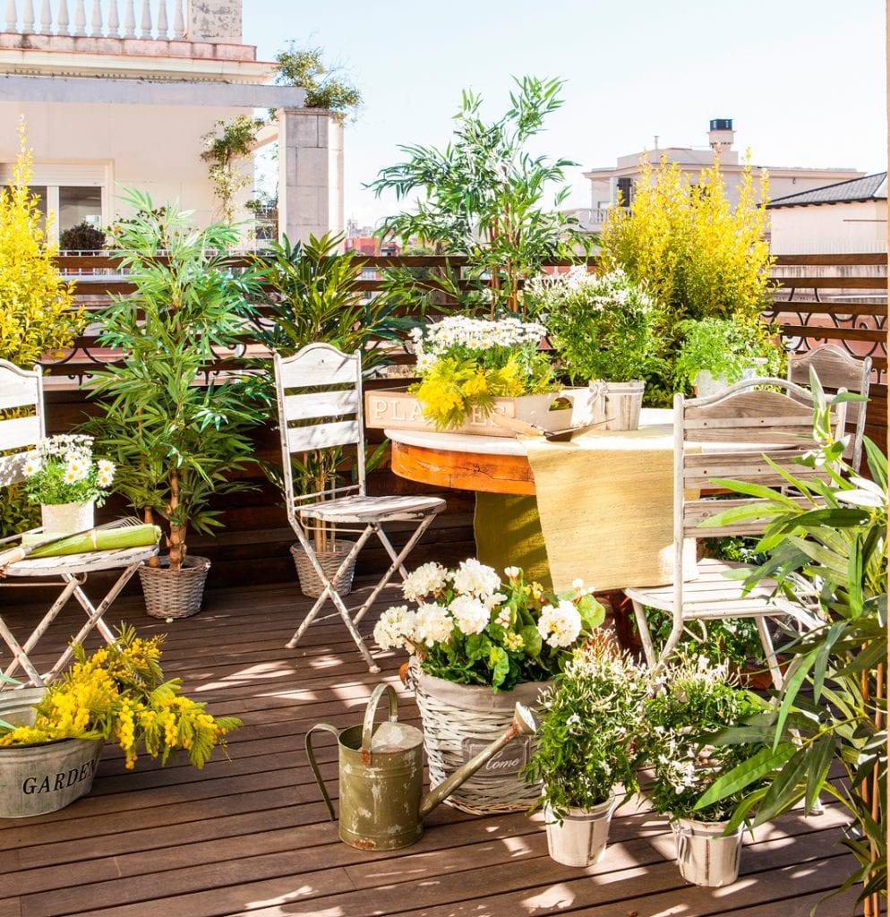 Terraza con plnatas y madera de exterior instalada a bajo precio.